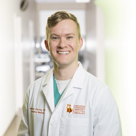 Dr. Matt Field, Arkansas Veterinary & Emergency Specialists
