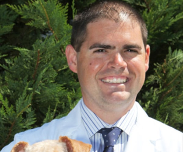 Dr. Anthony Loomis, Westfield Animal Hospital